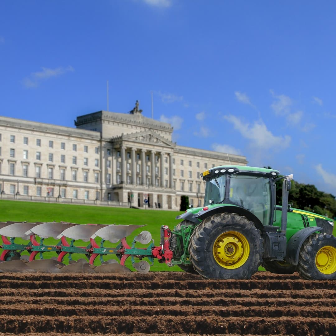 We're growing Spuds at Stormont!